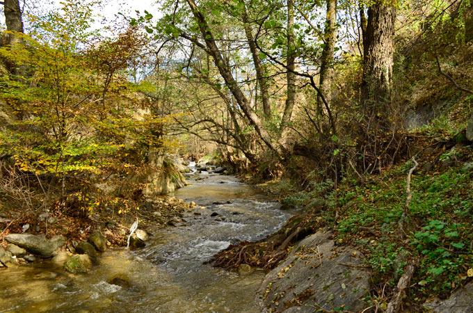konjarska reka 03